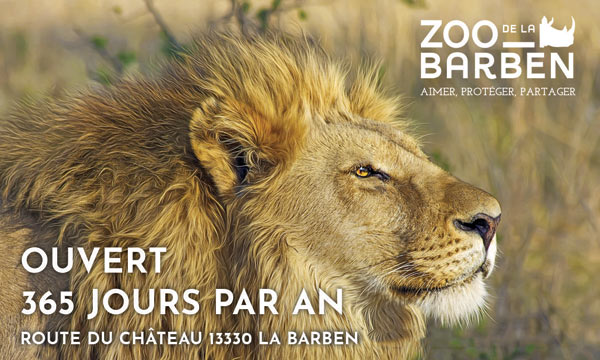 https://the-place-to-be.fr/wp-content/uploads/2019/05/billet-ZOO-DE-LA-BARBEN-2019.jpg