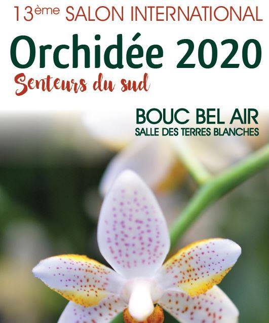 https://the-place-to-be.fr/wp-content/uploads/2020/01/saon-orchidee-2020-bouc-bel-air.jpg