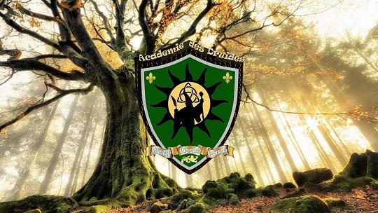 académie des druides mystic woods park langon