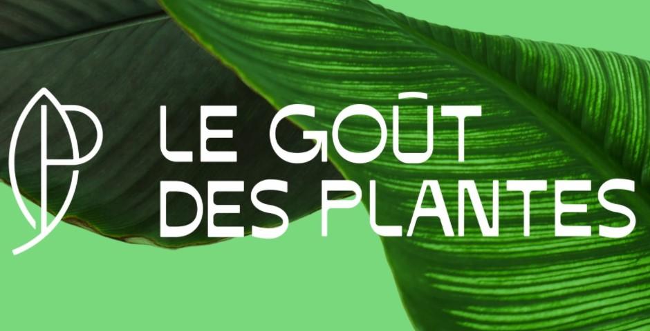 https://the-place-to-be.fr/wp-content/uploads/2021/10/le-gout-des-plantes-ventes-plantes-marseille-bordeaux-e2aec2be.jpg